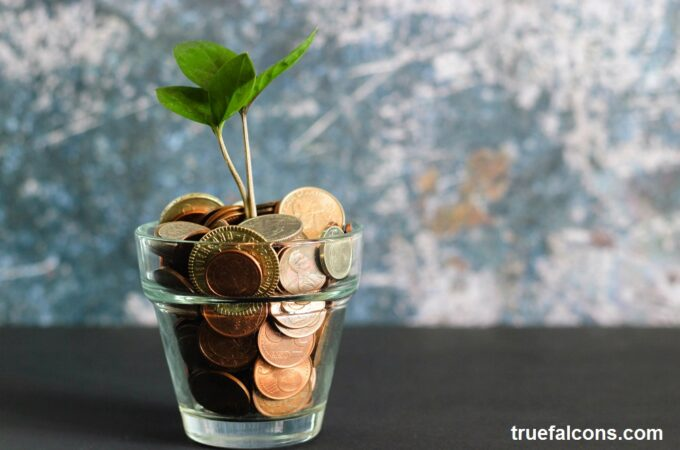 15 tips to save money when you alone