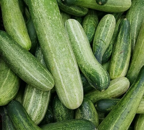 how to use cucumber for healthy and glowing skin