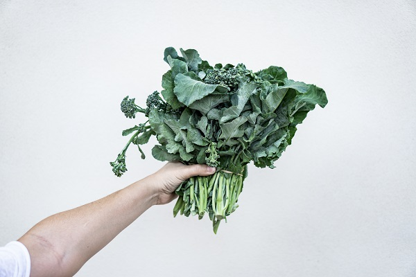 kale delicious diet food for healthy life